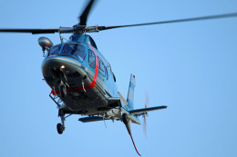 Wasawasa-isaoさんが、名古屋飛行場で撮影した福島県警察 A109E Powerの航空フォト(飛行機 写真・画像)