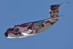 soiwbusさんが、入間飛行場で撮影した航空自衛隊 C-1の航空フォト(写真)