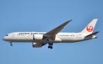 鉄バスさんが、成田国際空港で撮影した日本航空 787-8 Dreamlinerの航空フォト(写真)