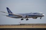かろすけさんが、宮崎空港で撮影した全日空 787-8 Dreamlinerの航空フォト(写真)