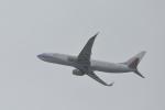 wtsnさんが、台北松山空港で撮影したチャイナエアライン 737-8ALの航空フォト(写真)