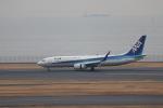 Teddyさんが、羽田空港で撮影した全日空 737-881の航空フォト(写真)