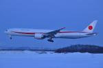 Tango-4さんが、千歳基地で撮影した航空自衛隊 777-3SB/ERの航空フォト(写真)