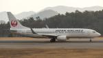 coolinsjpさんが、広島空港で撮影した日本航空 737-846の航空フォト(写真)