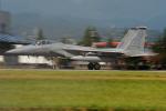 Tomo-Papaさんが、横田基地で撮影したアメリカ空軍 F-15C-30-MC Eagleの航空フォト(写真)