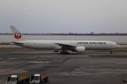 Digital Hanedaさんが、ジョン・F・ケネディ国際空港で撮影した日本航空 777-346/ERの航空フォト(飛行機 写真・画像)