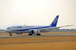 @DAISUKEさんが、熊本空港で撮影した全日空 787-8 Dreamlinerの航空フォト(写真)