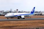 Takehiro-2018さんが、伊丹空港で撮影した全日空 787-8 Dreamlinerの航空フォト(写真)