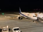 大富豪守護神さんが、高松空港で撮影した全日空 787-8 Dreamlinerの航空フォト(写真)