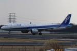 endress voyageさんが、岡山空港で撮影した全日空 A321-272Nの航空フォト(写真)