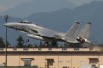 Tomo-Papaさんが、横田基地で撮影したアメリカ空軍 F-15C-31-MC Eagleの航空フォト(写真)
