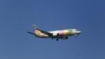 AlphaWing737ケインさんが、那覇空港で撮影したスカイネットアジア航空 737-43Qの航空フォト(写真)