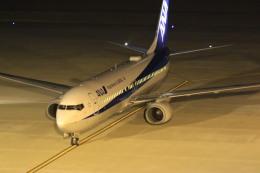 rokko2000さんが、神戸空港で撮影した全日空 737-881の航空フォト(写真)