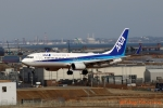 湖景さんが、仙台空港で撮影した全日空 737-881の航空フォト(写真)