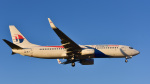パンダさんが、成田国際空港で撮影したマレーシア航空 737-8H6の航空フォト(写真)