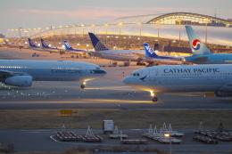 Parsleyさんが、関西国際空港で撮影したキャセイパシフィック航空 A330-343Xの航空フォト(飛行機 写真・画像)