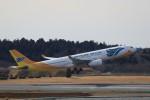 ☆ライダーさんが、成田国際空港で撮影したセブパシフィック航空 A330-343Eの航空フォト(写真)