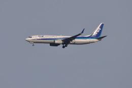 Cスマイルさんが、成田国際空港で撮影した全日空 737-881の航空フォト(飛行機 写真・画像)