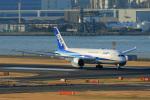 オポッサムさんが、羽田空港で撮影した全日空 787-8 Dreamlinerの航空フォト(写真)