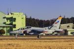 Mochi7D2さんが、茨城空港で撮影した航空自衛隊 T-4の航空フォト(写真)