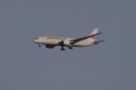 Cスマイルさんが、成田国際空港で撮影した日本航空 787-8 Dreamlinerの航空フォト(写真)