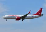 じーく。さんが、福岡空港で撮影したイースター航空 737-8-MAXの航空フォト(写真)