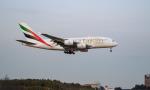 porcoさんが、成田国際空港で撮影したエミレーツ航空 A380-861の航空フォト(写真)