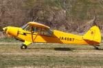MOR1(新アカウント)さんが、関宿滑空場で撮影した日本法人所有 PA-18-150 Super Cubの航空フォト(写真)