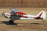 MOR1(新アカウント)さんが、羽生滑空場で撮影した羽生ソアリングクラブ A-1 Huskyの航空フォト(写真)