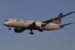 Cスマイルさんが、成田国際空港で撮影したユナイテッド航空 787-8 Dreamlinerの航空フォト(写真)