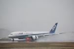 だいまる。さんが、岡山空港で撮影した全日空 787-8 Dreamlinerの航空フォト(写真)