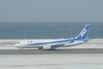 ユターさんが、稚内空港で撮影した全日空 737-881の航空フォト(写真)