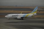 ユターさんが、羽田空港で撮影したAIR DO 737-781の航空フォト(写真)