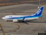HRK-HNDさんが、中部国際空港で撮影した全日空 737-781の航空フォト(写真)