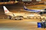 apphgさんが、中部国際空港で撮影したJALエクスプレス 737-846の航空フォト(写真)