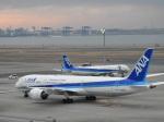 SKY☆MOTOさんが、羽田空港で撮影した全日空 787-9の航空フォト(写真)