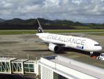 MARK0125さんが、新石垣空港で撮影した全日空 777-281の航空フォト(写真)