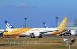 にしやんさんが、成田国際空港で撮影したスクート 787-9の航空フォト(写真)
