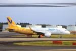 zero1さんが、成田国際空港で撮影したバニラエア A320-214の航空フォト(写真)