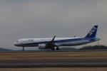 masashiiiさんが、岡山空港で撮影した全日空 A321-272Nの航空フォト(写真)