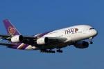 ランウェイさんが、成田国際空港で撮影したタイ国際航空 A380-841の航空フォト(写真)