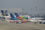 HNANA787さんが、関西国際空港で撮影した日本トランスオーシャン航空 737-8Q3の航空フォト(写真)