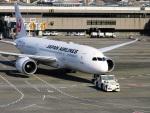 DVDさんが、成田国際空港で撮影した日本航空 787-8 Dreamlinerの航空フォト(写真)