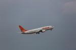 meijeanさんが、中部国際空港で撮影したチェジュ航空 737-85Fの航空フォト(写真)
