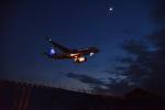 Cスマイルさんが、成田国際空港で撮影した全日空 A320-271Nの航空フォト(写真)