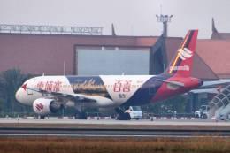 jk3yhgさんが、シェムリアップ国際空港で撮影したバッサカ・エア A320-214の航空フォト(飛行機 写真・画像)