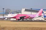 けいとパパさんが、成田国際空港で撮影したピーチ A320-214の航空フォト(写真)