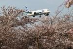 kaeru6006さんが、成田国際空港で撮影した全日空 787-8 Dreamlinerの航空フォト(写真)