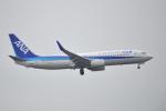 デデゴンさんが、石見空港で撮影した全日空 737-881の航空フォト(写真)