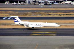 まいけるさんが、羽田空港で撮影したバンク・オブ・アメリカ G500/G550 (G-V)の航空フォト(写真)